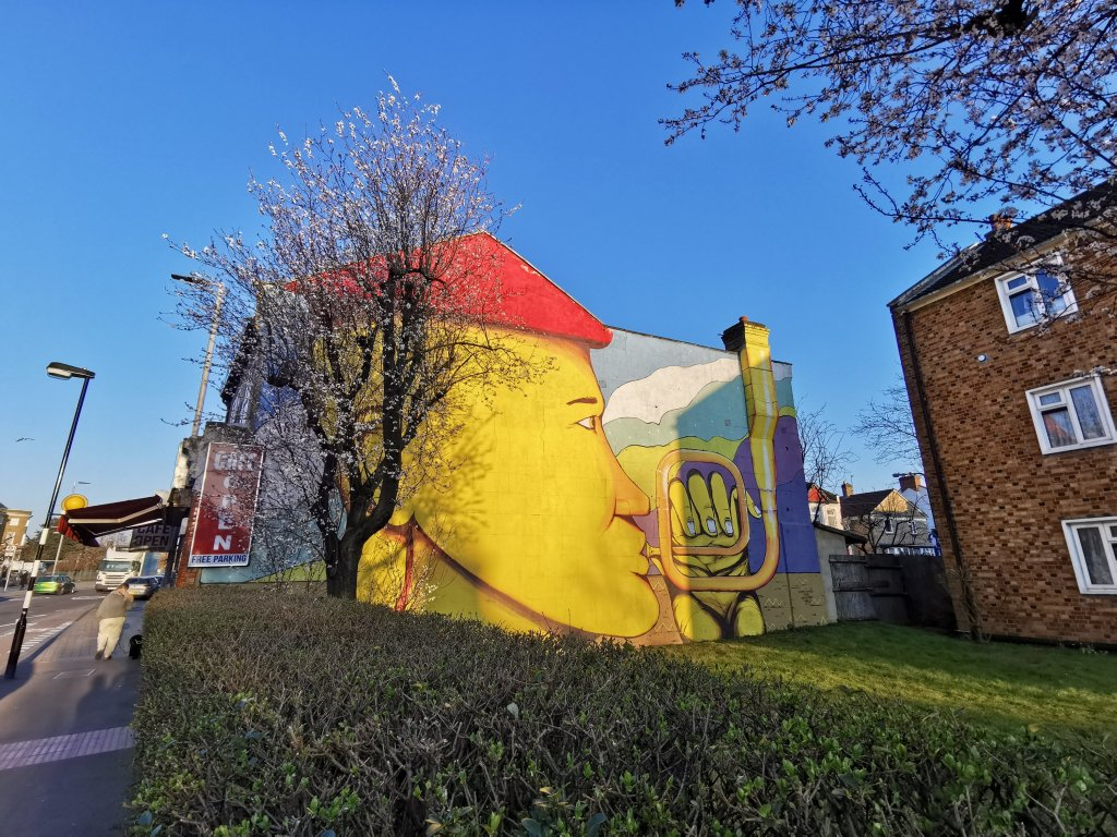 Street art mural by RUN in Walthamstow