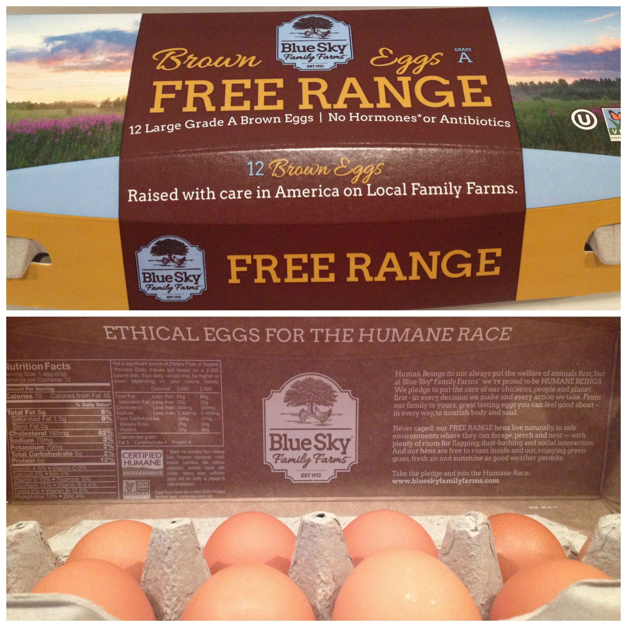 Inspiring Kitchen Blue Sky Farms Eggs