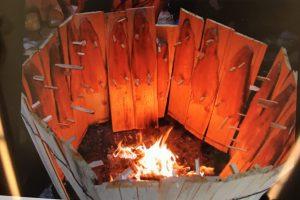 blaze salmon finland