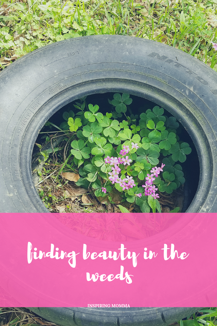 Finding Beauty In The Weeds