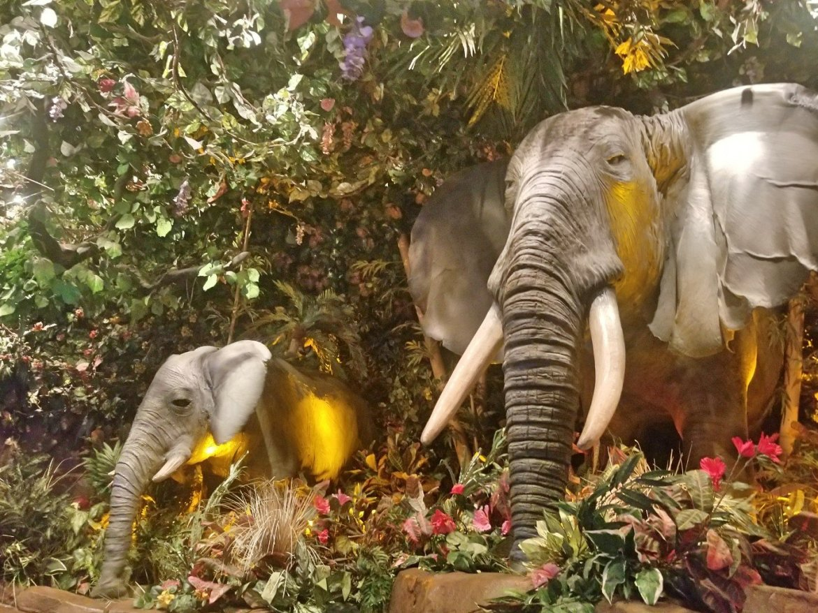 Things To Do With Kids In Galveston: Rainforest Cafe and River Adventure Ride Galveston