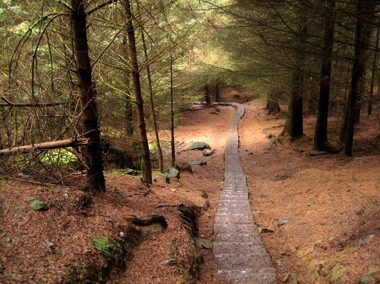 Image result for The Wicklow Mountains