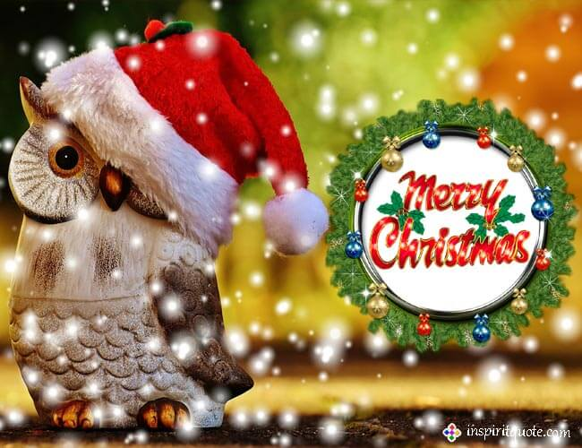 Best Merry Christmas wishes images free download HD, Wallpapers Photos & GIF Pics