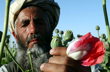 afganmos 468x305 xHzs9 3868