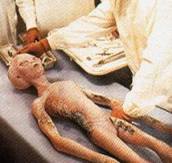 aliens wsyQI 17334