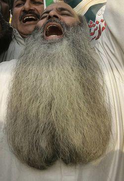 beard gZ7Jt 16105