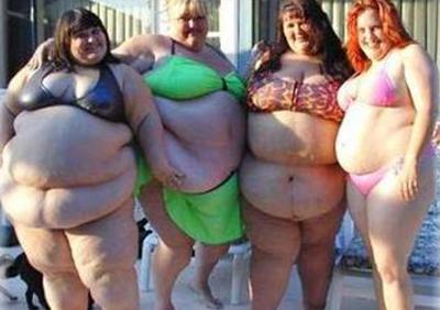 obese TAJg3 17334