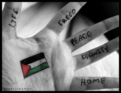 p a l e s t i n e by free palestine ZM8wf 19672