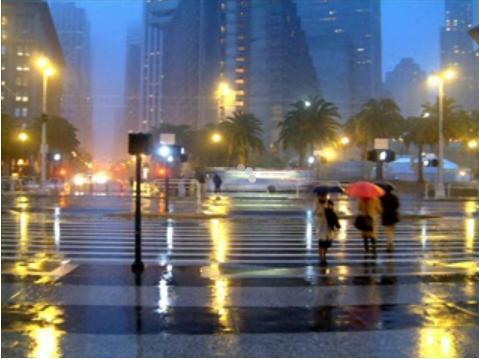 rain tjyUw 16988