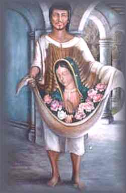 saints juandiego tNnHy 18311