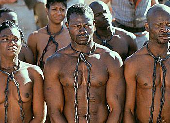 slaves scar 65
