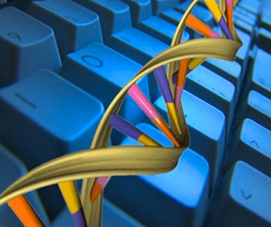 biological-computer