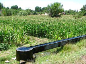Osmaniye_irrigation