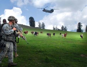US_soldiers_with_cows_in_Kunar_Povince_of_Afghanistan