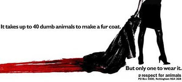 Lynx's Dumb Animals campaign