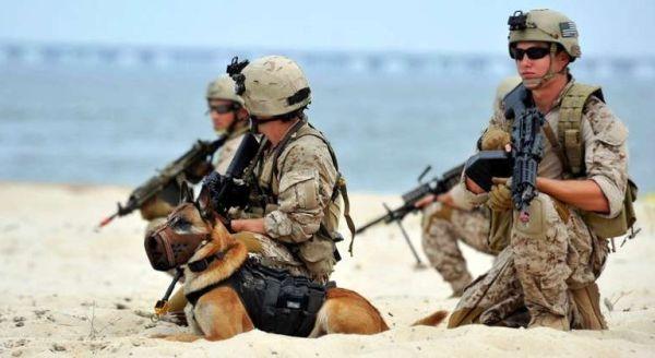 Navy SEALs, United States