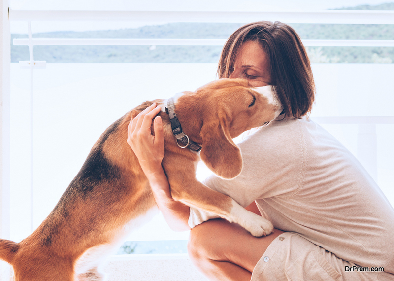 Give-Your-Dog-a-Healthy-and-Happy-Life