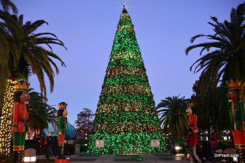 A Christmas Tree Show