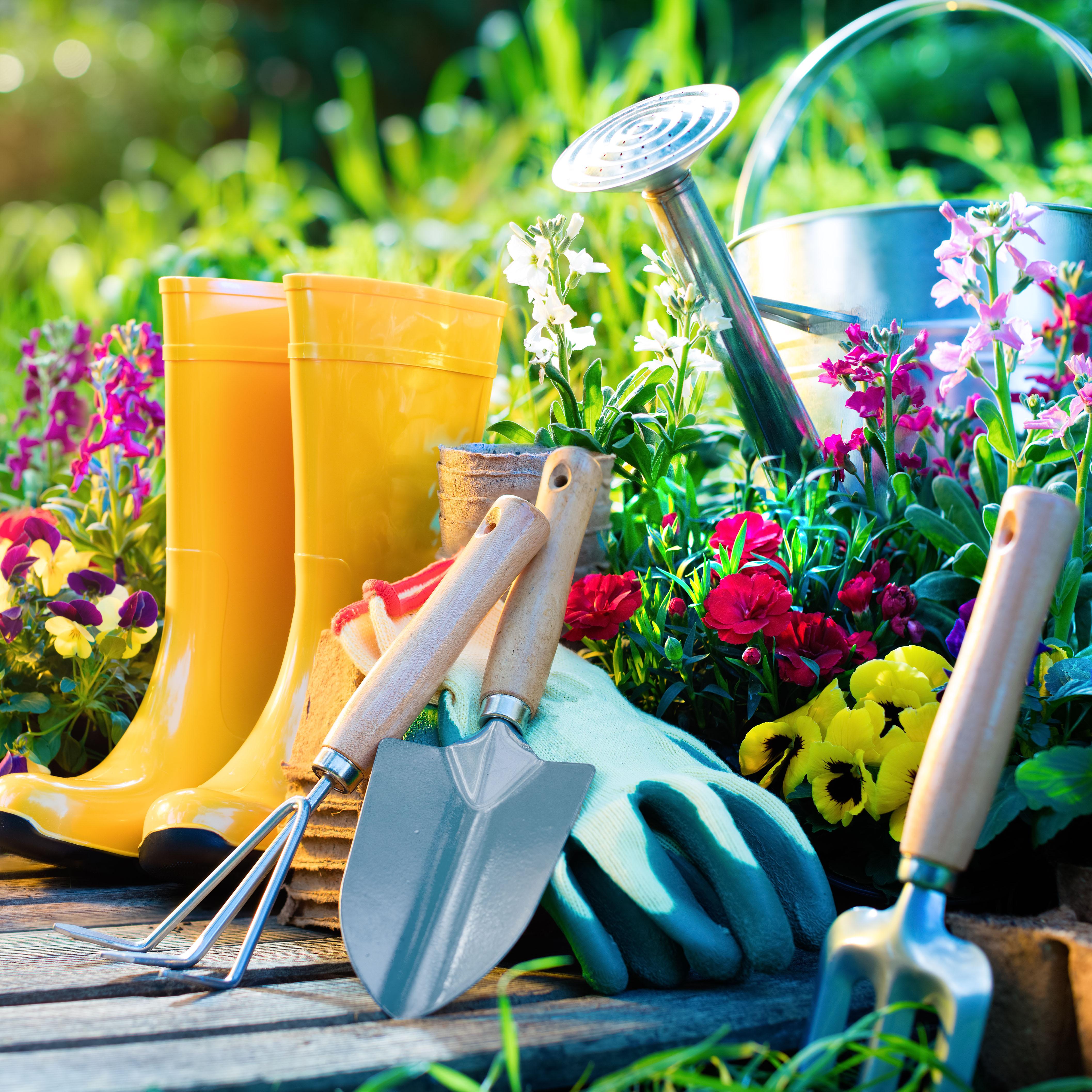 Blumen mit Werkzeug und Gummistiefeln im Garten