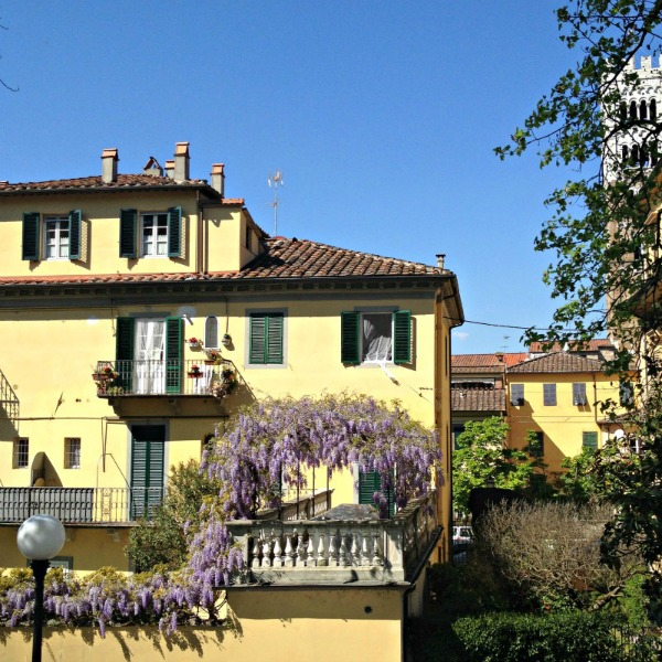 A Day Trip in Lucca, old walls