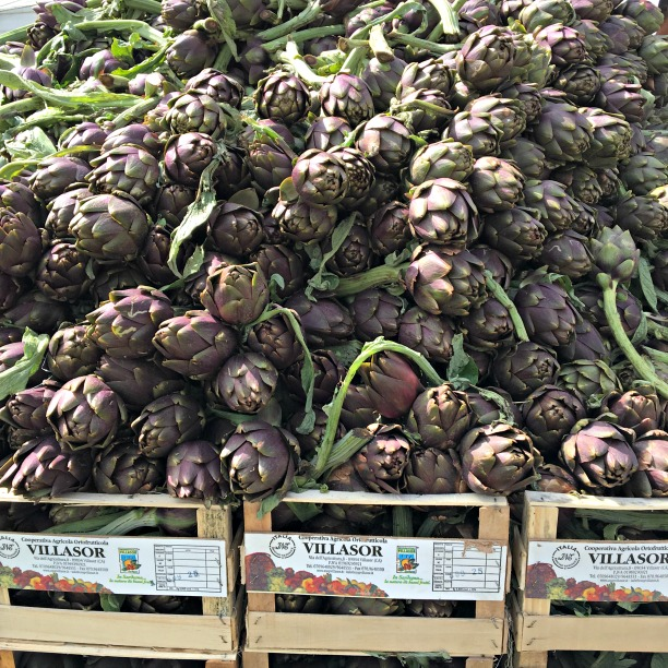 Life in Italy: artichokes on display at a market in Lucca