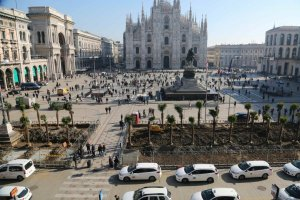 The planting of palm trees in Piazza Duomo, Milan on Instantly Italy