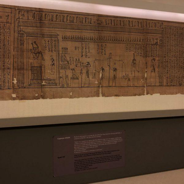 Museo Egizio, a papyrus