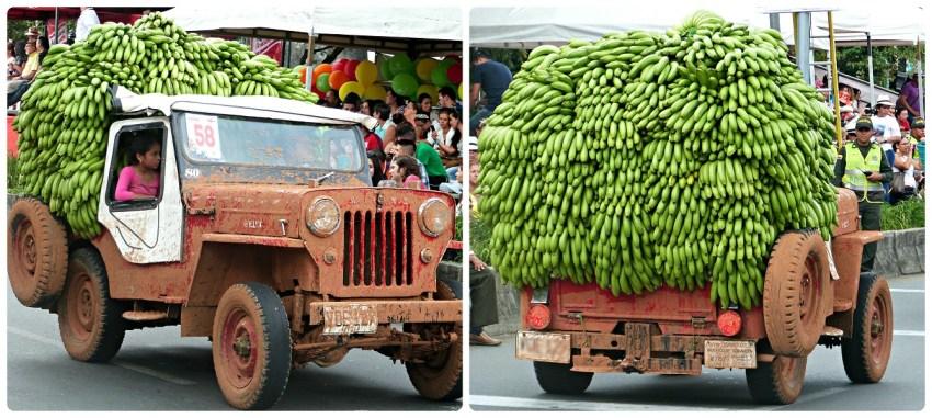 Jeep muy cargada con bananos en el desfile del Yipao en Armenia