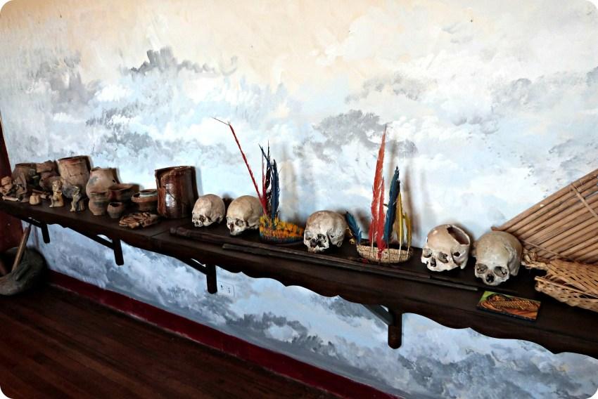 Cráneos sobre un estante de madera, en el museo nacional del sombrero en la casa de la cultura en Aguadas
