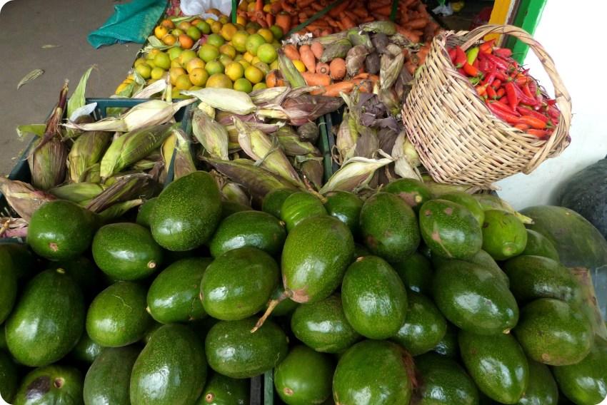 Avocats au marché d'Armenia