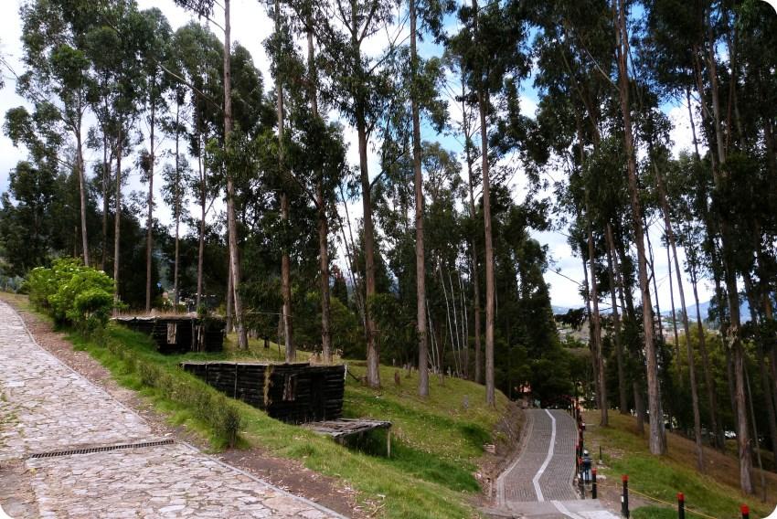 Chemin menant vers la cathédrale de sel de Zipaquira entouré d'arbres