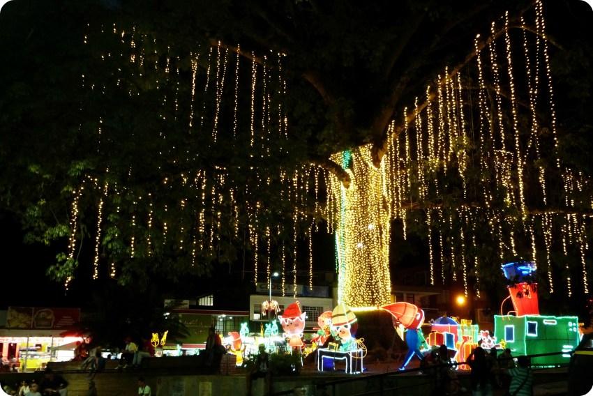 árbol iluminado del Parque Sucre de Armenia