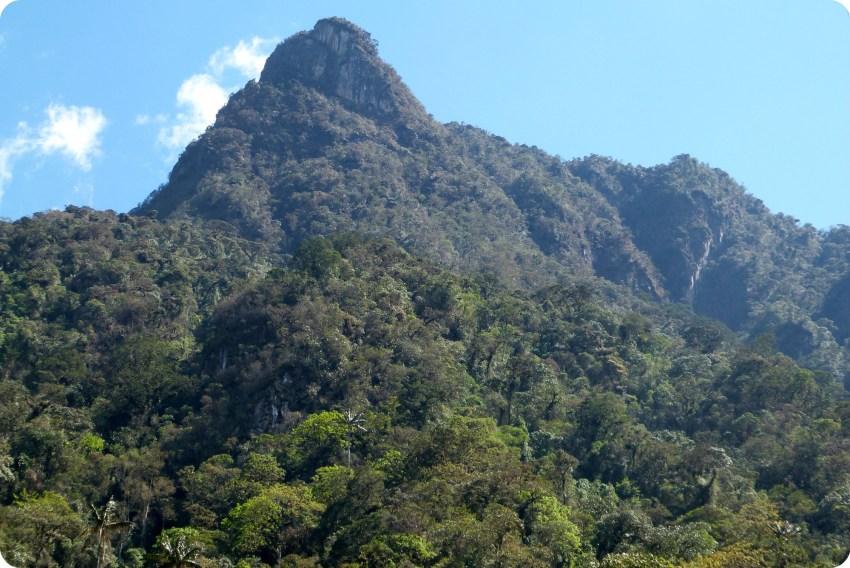 pico de la montaña en el valle de Cocora