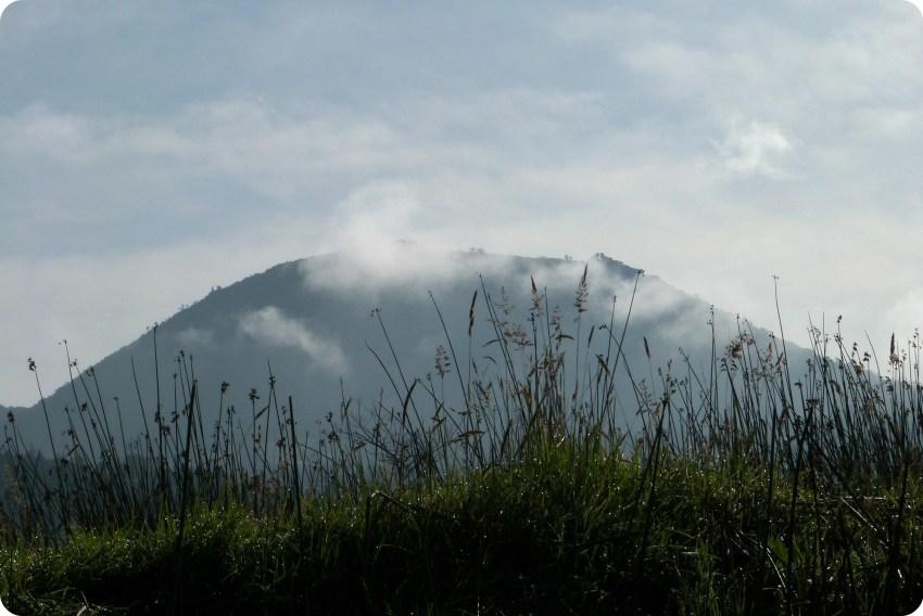gramineas y montañas en la laguna de la Cocha de Pasto