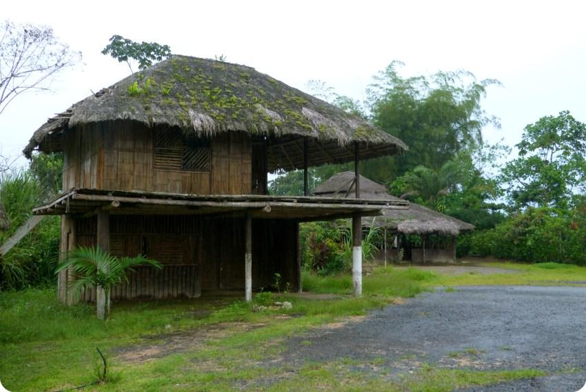 Maison des Tsachila à Santo Domingo de los Colorados