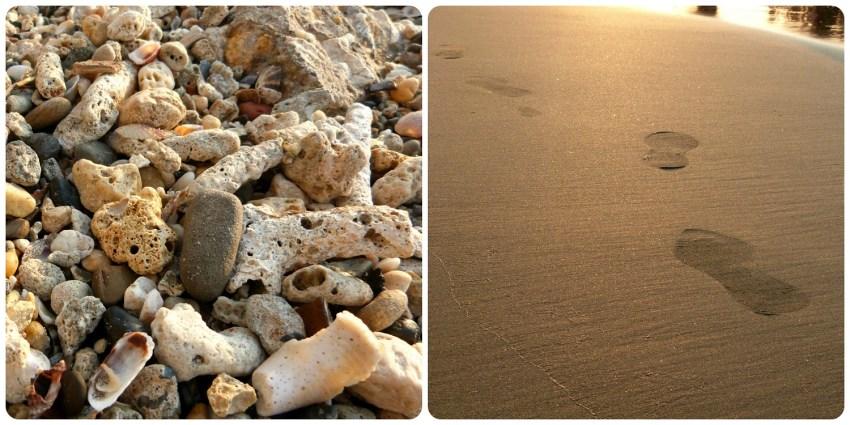 Zoom sobre conchas y huellas de pasos en la arena de una playa de Cartagena