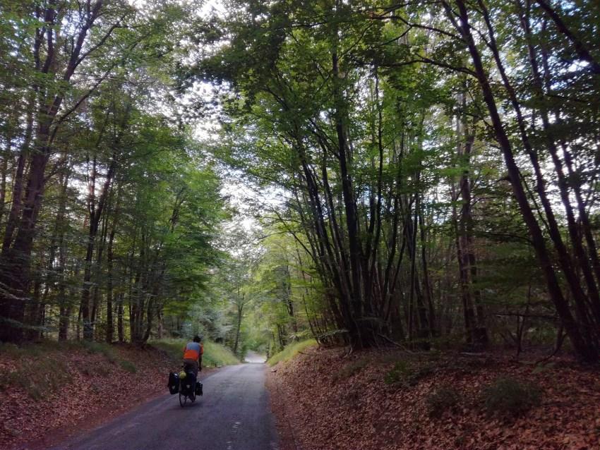 foret de fontainebleau ile de france voyage vélo