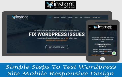 Instant Wordprss help