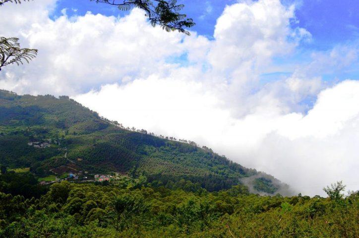 tamil-nadu-Yercaud-hill-station