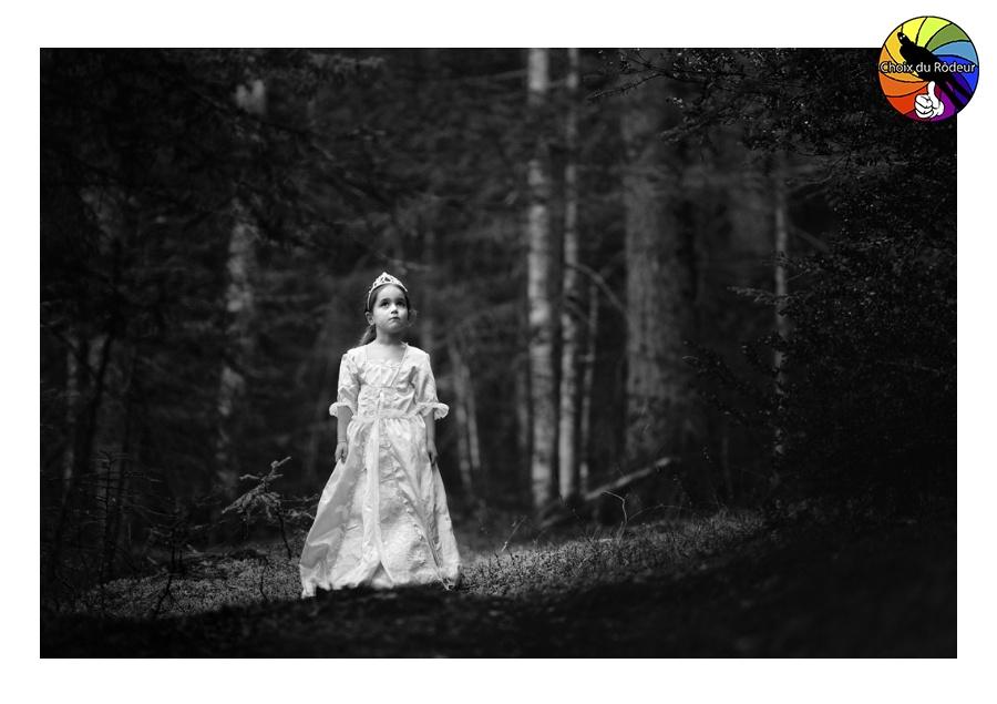 2017, forum, Instinct-Photo, Pichoun, photo, rôdeur, Sélection, N&B, portrait, fille, robe, princesse