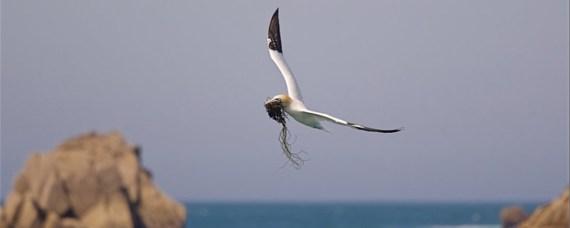 ©️ Instinct photo/Patochelou sortie 7 îles U