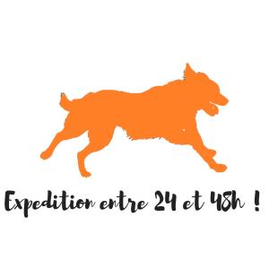 Instinct de Chien Boutique I vente de matériel, d'accessoires et de friandises pour votre chien