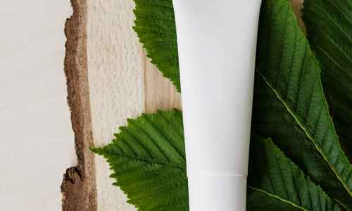 blank cream tube on fresh chestnut leaf