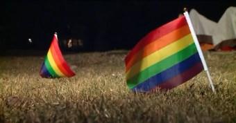RainbowFlagsIllinois.jpg