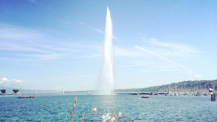 Genève - Eutonie