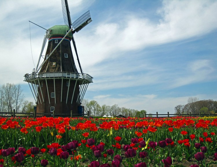 Tilting at Windmills or Real Work with Real People?