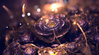 fractal-abstract-digital-art-bokeh-purple-fractal-flowers-lights-depth-of-field-1920x1080