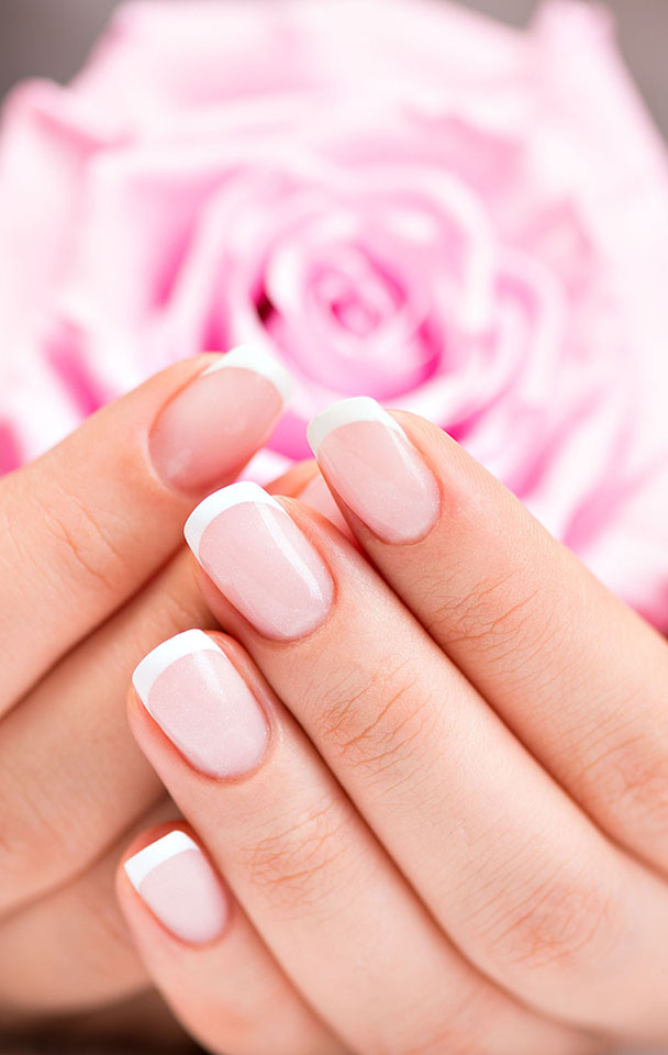 Beautiful woman's nails with beautiful french manicure  and pink rose