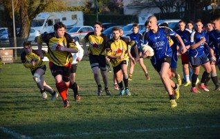 rugby 2019 2
