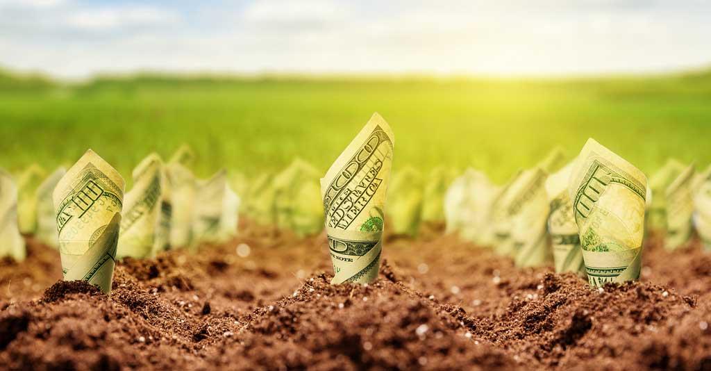 sucesso das propriedades rurais